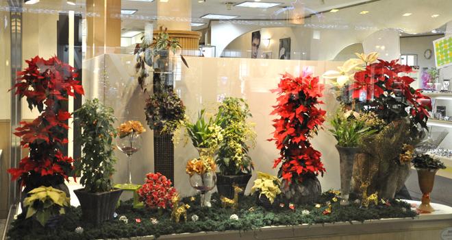 静岡市 ウィンドウディスプレイ クリスマス
