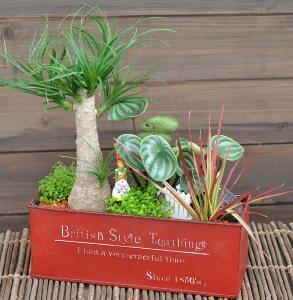 美容室 植木