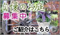 ガーデン紹介、一般家庭の庭